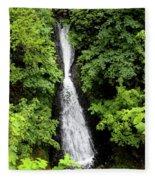 Shepperd's Dell Falls, Oregon Fleece Blanket