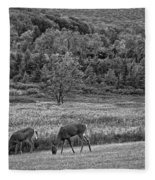 Shh... Bw Fleece Blanket