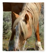Shiloh Fleece Blanket