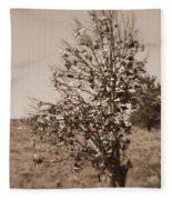 Shoe Tree In Sepia Fleece Blanket