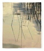 Shore Lines Fleece Blanket