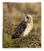 Short-eared Owl In Tree Fleece Blanket