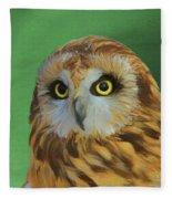 Short Eared Owl On Green Fleece Blanket