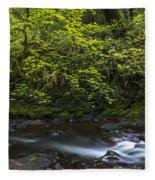Short Sands Creek Fleece Blanket