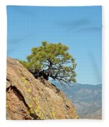 Shrub And Rock At Canon City Fleece Blanket