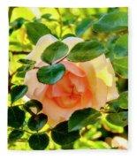 Shy Rose Fleece Blanket