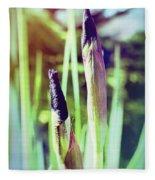 Siberian Iris Bud Fleece Blanket