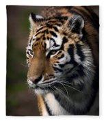 Siberian Tiger Fleece Blanket
