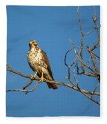Sideways Glance Fleece Blanket