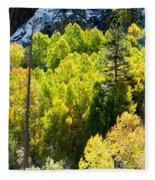 Sierra Fall Forest Fleece Blanket
