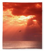 Siesta Key Pelican Fleece Blanket
