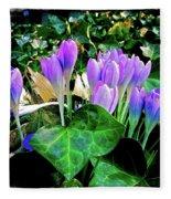 Signs Of Spring I Fleece Blanket