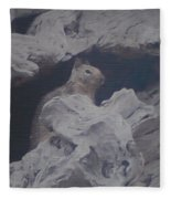 Silent Observer Fleece Blanket