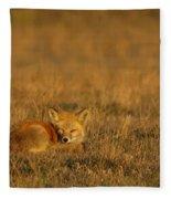 Silly Fox Fleece Blanket
