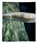 Silver Arowana Fish In Paludarium Fleece Blanket