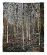 Silver Birch Winter Garden Fleece Blanket