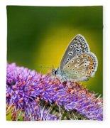 Silver-studded Blue Butterfly Fleece Blanket