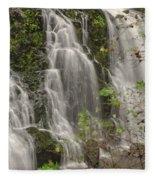 Silverdale Falls 2 Fleece Blanket