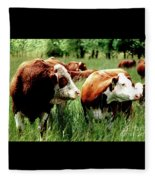 1992 Oregon State University Art About Agriculture Directors Award Winner.  Fleece Blanket