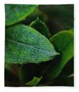 Simply Green Fleece Blanket