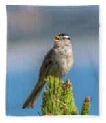 Singing Sparrow Fleece Blanket