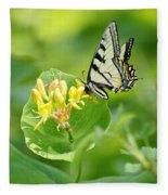 Sipping Swallowtail Fleece Blanket