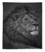 Sir Lion Fleece Blanket