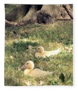 Sitting Ducks Fleece Blanket