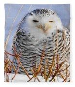 Sitting Snowy Owl Fleece Blanket
