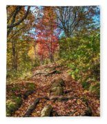 Skeleton Of Graveyard Fields Fleece Blanket