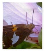 Skipper Butterfly With White And Orange Colors Fleece Blanket