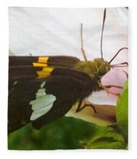 Skipper  Fleece Blanket