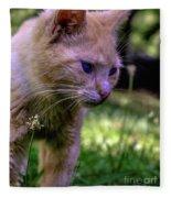 Skippy Feral Cat Portrait 0369b Fleece Blanket
