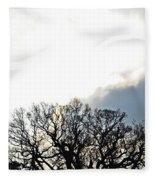 Sky Lights Fleece Blanket