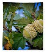 Sky Lit Oak Acorns Fleece Blanket