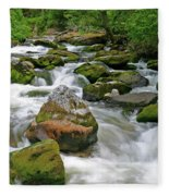 Slate Creek, Nez Perce National Forest, Idaho Fleece Blanket