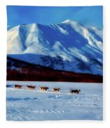 Sledding In Russia Fleece Blanket