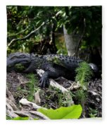 Sleeping Alligator Fleece Blanket