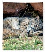 Sleeping Bobcat Fleece Blanket