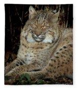 Sleepy Bobcat Fleece Blanket