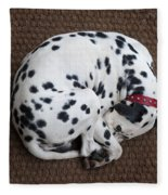 Sleeping Dalmatian II Fleece Blanket