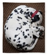 Sleeping Dalmatian Fleece Blanket