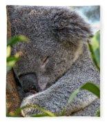 Sleeping Koala - Canberra - Australia Fleece Blanket