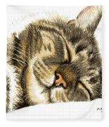Sleeping Tabby Cat  Fleece Blanket