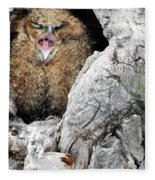 Sleepy Owlet Fleece Blanket