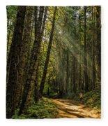 Smokey Forest Fleece Blanket