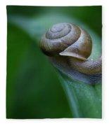 Snail In The Morning Fleece Blanket