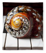 Snail Shell On Keys Fleece Blanket
