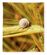 Snails On Wheat Fleece Blanket
