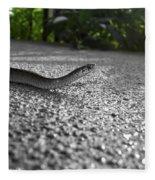 Snake In The Sun Fleece Blanket